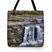 0017 Letchworth State Park Series  Tote Bag