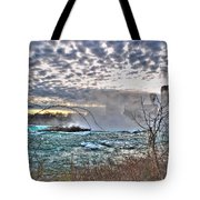 0018 View Of Horseshoe Falls From Terrapin Point Series Tote Bag