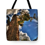 002 Reaching For The Sky Tote Bag