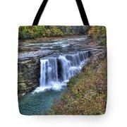 0021 Letchworth State Park Series Tote Bag