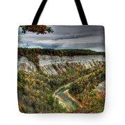 0022 Letchworth State Park Series   Tote Bag