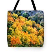 0027 Letchworth State Park Series   Tote Bag