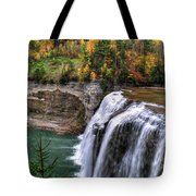 0035 Letchworth State Park Series  Tote Bag