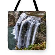 0039 Letchworth State Park Series Tote Bag