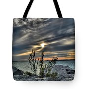 004 In Harmony With Nature Series Tote Bag