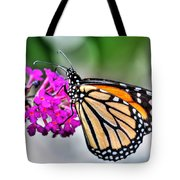 004 Making Things New Via The Butterfly Series Tote Bag