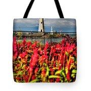 004 Summer Sunrise Series Tote Bag