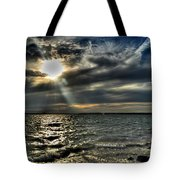 005 In Harmony With Nature Series Tote Bag