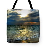 006 In Harmony With Nature Series Tote Bag