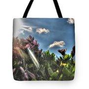 007 Summer Sunrise Series Tote Bag