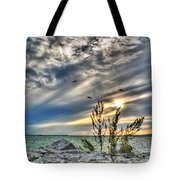 008 In Harmony With Nature Series Tote Bag
