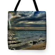 009 In Harmony With Nature Series Tote Bag