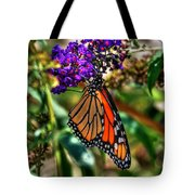 011 Making Things New Via The Butterfly Series Tote Bag
