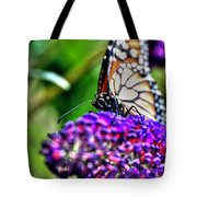 012 Making Things New Via The Butterfly Series Tote Bag