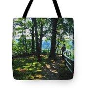 012a Niagara Gorge Trail Series  Tote Bag