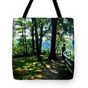 012b Niagara Gorge Trail Series  Tote Bag