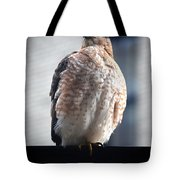 04 Falcon Tote Bag