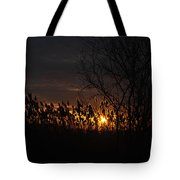 04 Sunset Tote Bag