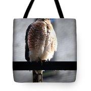 05 Falcon Tote Bag