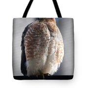 06 Falcon Tote Bag