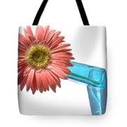 0662a-1 Tote Bag