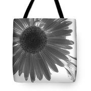 0684a4 Tote Bag