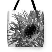 0688c-016 Tote Bag