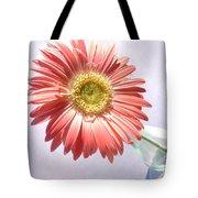 0702c1 Tote Bag