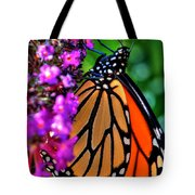 007 Making Things New Via The Butterfly Series Tote Bag