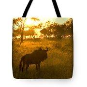 A Backlit Wildebeest Resting Tote Bag