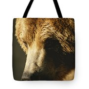 A Close View Of The Face Of A Grizzly Tote Bag