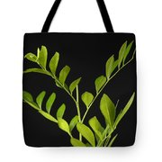 A Coffee Plant Coffea Arabica Tote Bag