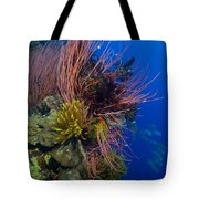 A Colony Of Red Whip Fan Corals Tote Bag