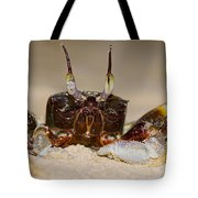 A Crab On The Shore  Tote Bag