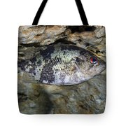 A Shadow Bass Hovers Motionless Tote Bag