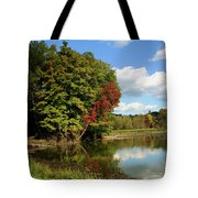 A Touch Of Autumn Tote Bag by Kristin Elmquist