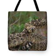 A Western Diamondback Rattlesnake Tote Bag