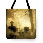 Abandoned And Overgrown Cemetery Tote Bag