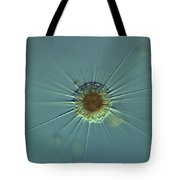Actinophyrs Lm Tote Bag by M. I. Walker