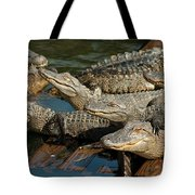 Alligator Pool Party Tote Bag