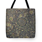 Amoeba Proteus Lm Tote Bag by M. I. Walker