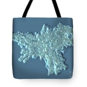 Amoeba Proteus Tote Bag