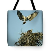 An Osprey Carrying A Fish Back Tote Bag
