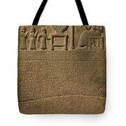 Ancient Astronomical Calendar Tote Bag