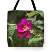Arctic Rose Tote Bag