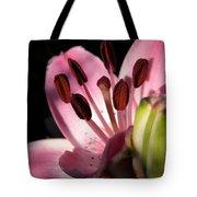 Asiatic Lily Named Vermeer Tote Bag