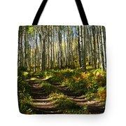 Aspen Dreamland Tote Bag