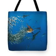 Atlantic Sailfish Istiophorus Albicans Tote Bag
