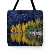 Autumn, Alpine Larch Trees, Lake Agnes Tote Bag