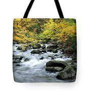 Autumn Stream 3 Tote Bag